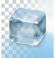 Ice cube for cocktail vector image