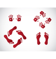 Hand and feet gestures vector image vector image