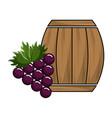 wool barrel with grape gruit tasty vector image