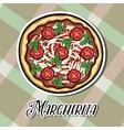 NewPizza vector image