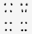 Footprints of crocodile vector image