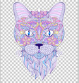 colorful head of cat vector image