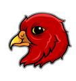 Bird Head vector image vector image