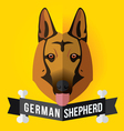 german shepherd vector image