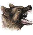Angry German Shepherd 1 vector image
