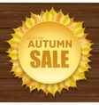 Beautiful autumn sale frame with yellow leaves vector image vector image
