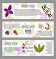 spices horizontal flyer design vector image