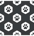 Black hexagon paw pattern vector image