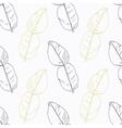 Hand drawn kaffir lime branch wirh flowers vector image