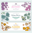 Flower vintage styled sketch banners vector