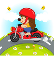 hedgehog on motorcycle rides on road vector image