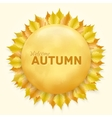 Beautiful autumn frame with yellow leaves vector image vector image
