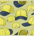 baseball cap set pattern vector image
