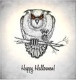 Horror owl in a sketch style vector image