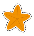 starfish or sea star icon image vector image