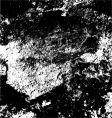 grunge black dapple vector image vector image