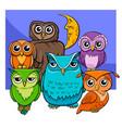 owls group cartoon animal characters vector image