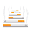 Smoking Cigarettes vector image vector image