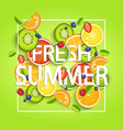 Summer background with fruits vector image