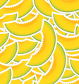 Yellow melon seamless background vector image vector image