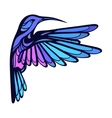 Flying tropical stylized hummingbird on white vector image