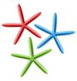 Finger Starfish vector image