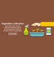 vegetables cultivation banner horizontal concept vector image