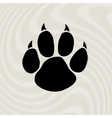Black animal paw print isolated on pattern vector image