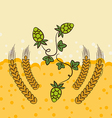 Beer background with hop leaves and wheats vector image