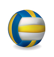 Volley ball vector image