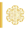 Traditional golden decor on white background vector image