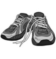 pair of sneakers vector image vector image