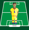Computer game Romania Football club player vector image