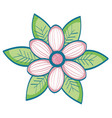 flower and leaves design vector image