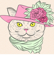 Funny British cat lady vector image