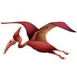 flying pterosaur vector image