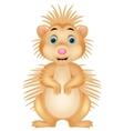 Cute porcupine cartoon vector image