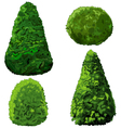 Collection of Bushes and Cypress vector image