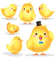 Cute Chick cartoon vector image