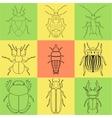 Insect icons set dor-beetle and firefly firebug vector image