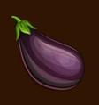 eggplant icon vector image vector image