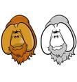 Orangutans vector image vector image