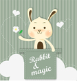 magic bunny vector image