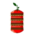 Graphic Tomato Hamburger vector image