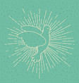 color background with silhouette side view pigeon vector image