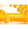 orange citrus backgrounds fruits vector image