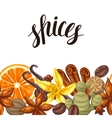 Seamless border with various spices vector image