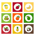 icons citrus tropical fruits on colored background vector image