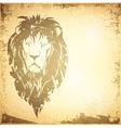 Grunge Lion Vintage Background vector image vector image