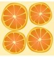 texture orange vector image vector image